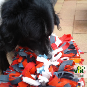 HW in je hondenwerk